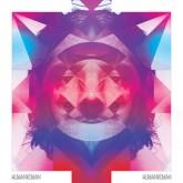 human-woman-human-woman-cd-hfn-music-cover