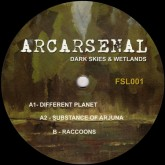 arcarsenal-dark-skies-wetlands-finale-sessions-cover