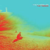 the-flaming-lips-the-terror-cd-bella-union-cover