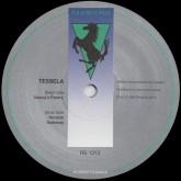 tessela-nancys-pantry-horizon-gate-r-s-records-cover