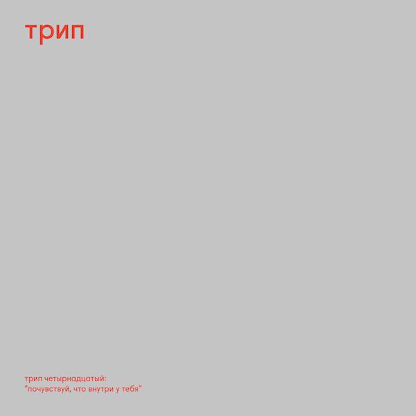 nina-kraviz-pochuvstvui-trip-cover