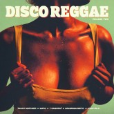 various-artists-disco-reggae-vol2-cd-stix-records-cover