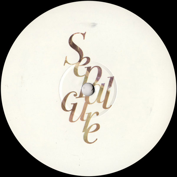 sepalcure-fight-for-us-loosen-up-remixes-hotflush-recordings-cover