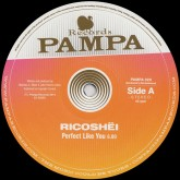 ricoshei-dave-dk-perfect-like-you-pampa-records-cover