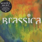 brassica-hayat-zor-ep-civil-music-cover
