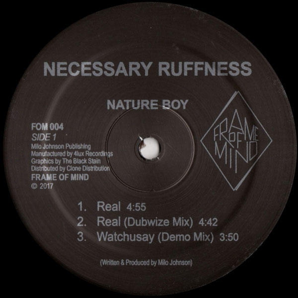 nature-boy-necessary-ruffness-frame-of-mind-cover