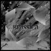 brassica-temple-fortune-ep-civil-music-cover