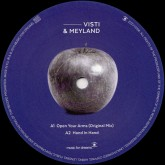 visti-meyland-open-your-arms-be-garth-rem-music-for-dreams-cover