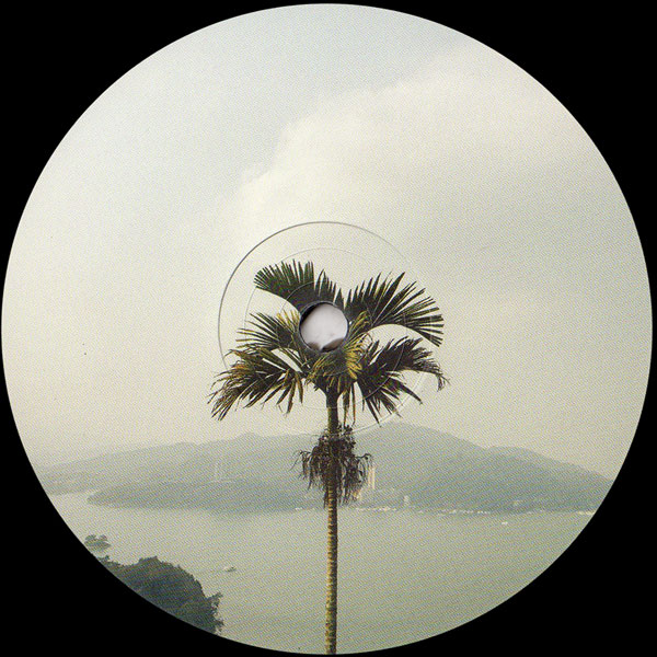 jtijn-the-deluge-ep-ellese-lost-palms-cover