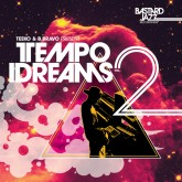 tekko-b-bravo-various-tempo-dreams-vol-2-lp-bastard-jazz-cover