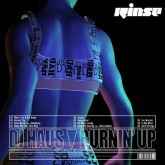 dj-haus-burnin-up-lp-rinse-records-cover