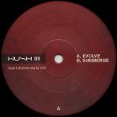 dvs1-evolve-submerge-hush-records-cover