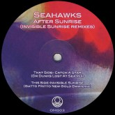 seahawks-after-sunrise-dr-dunks-gatto-ocean-moon-cover